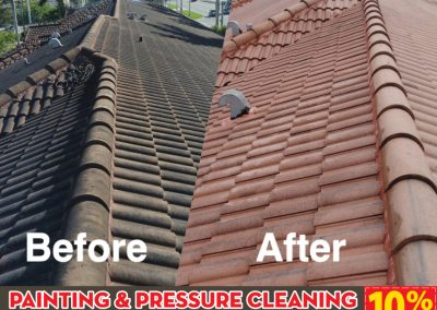 Pressure Cleaning 2